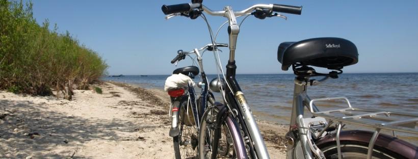 rent bike sardinia